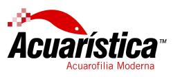 acuaristica - skimz.sg
