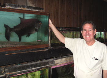 Same Fish In Queens Petshop For 41 Years