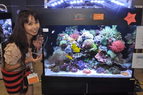 Aquarama 2011 - Skimz Singapore LLP - AquaMarin Aquatic Pets