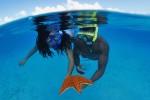 Australia's Best Dive Spots