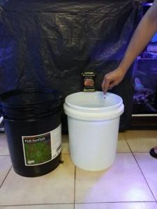 Skimz PUR ReefSalt Testing - Step 18
